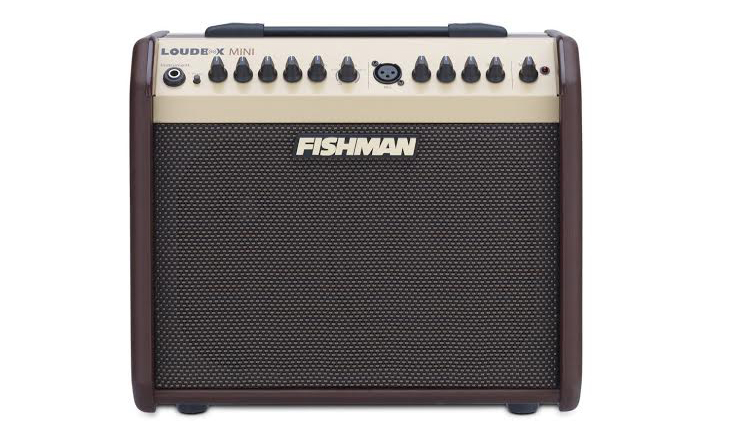 Fishman Loudbox Mini Review Super Punchy Output from a Small Amp